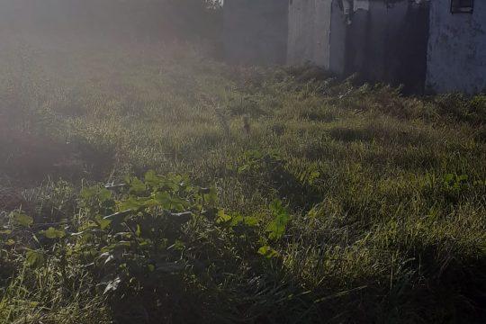 Terreno com 710 m2 Gafanha Nazaré